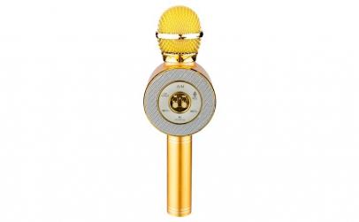 Microfon Karaoke Wireless cu Bluetooth,