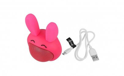 Boxa portabila Bluetooth TWS