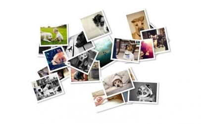 tiparire 36 poze si album foto inclus