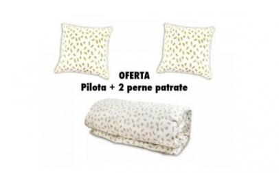 SET Pilota puf de gasca + 2 Perne 70X70