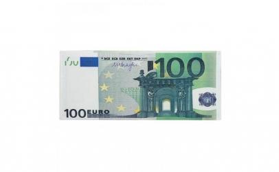 Portbancnota piele ecologica 100 EURO