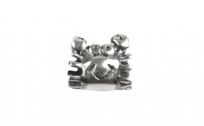 Charm Argint 925 Rac