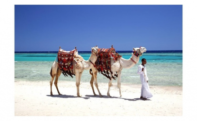 Sejur avion Hurghada Egipt