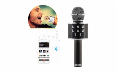 Microfon karaoke rotund