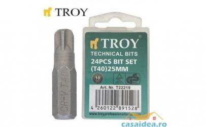 Set de biti Torx (T 40 x 25 mm)  24