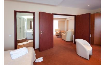 Hotel Cocor 4*