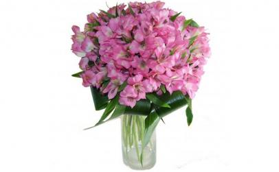 Buchet de 15 alstroemeria roz