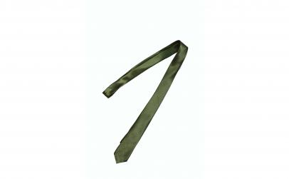 Cravata cu aspect matasos, verde inchis