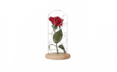 Cupola de sticla cu trandafir