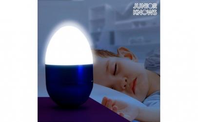 Ou cu LED Decorativ