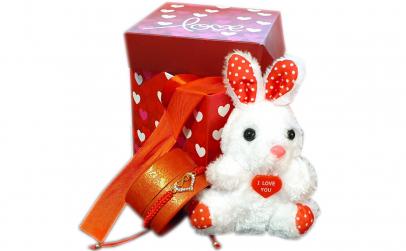 Set Valentine's Day si Dragobete