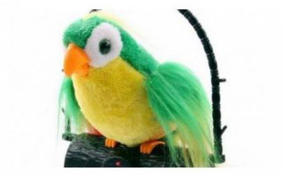 Jucaria papagal vorbitor verde