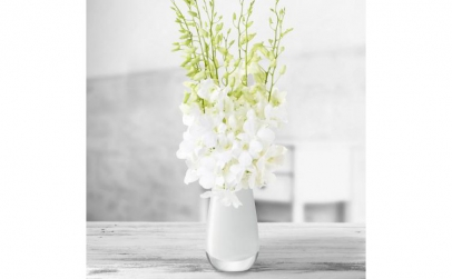 Buchet de 9 orhidee dendrobium albe