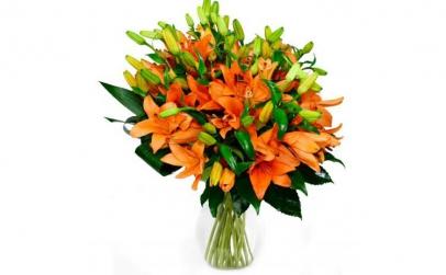 Buchet de 19 crini asiatici portocalii