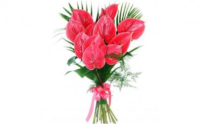Buchet de 9 anthurium roz