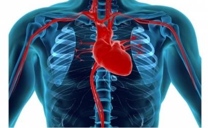 Pachet cardio Complet Plus