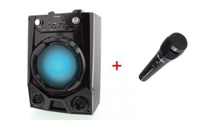 Boxa Wireless + Microfon