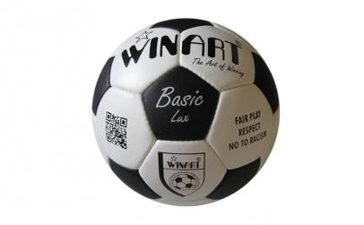 Minge fotbal din piele naturala