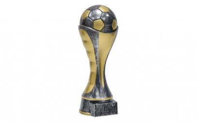 Cupa de campioni la fotbal.
