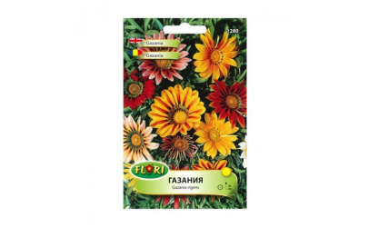 Seminte flori  Florian  flori de gazania