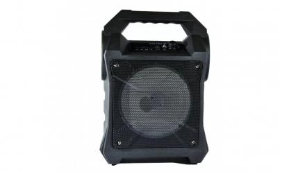 Boxa Portabila 50W, Bluetooth