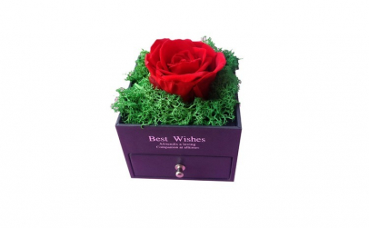 Trandafir Criogenat rosu cu licheni, BV,