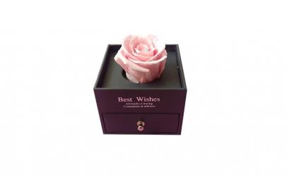 Trandafir Criogenat roz, BV, 10 cm ,