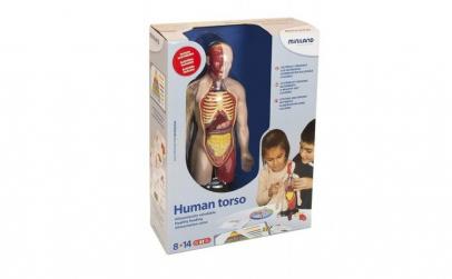 Kit educational mulaj Corpul uman si