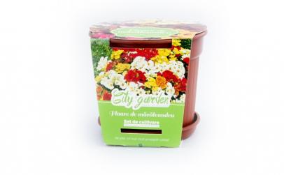 Set de cultivare Flori Macaleandru