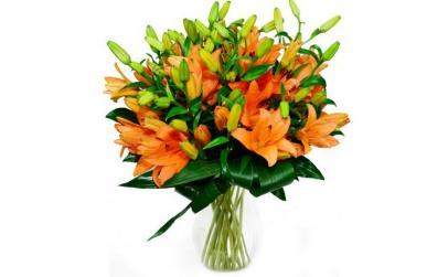 Buchet de 15 crini asiatici portocalii