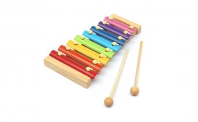 Jucarie muzicala Xilofon - 8 note