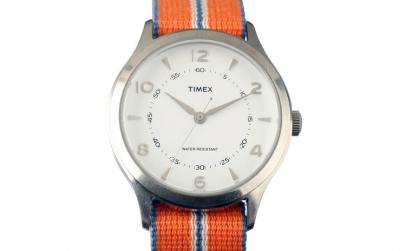 Ceas TIMEX ARCHIVE Model WHITNEY VILLAGE