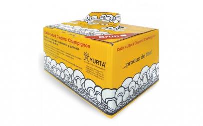 Cutie cultura ciuperci Champignon alb