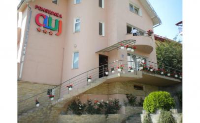 Pensiunea Cluj 3*