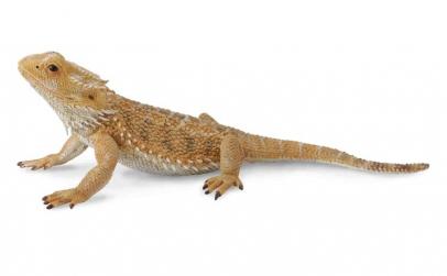 Figurina Soparla Dragon cu barba L
