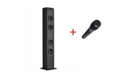 Sistem audio + Microfon + Card Memorie