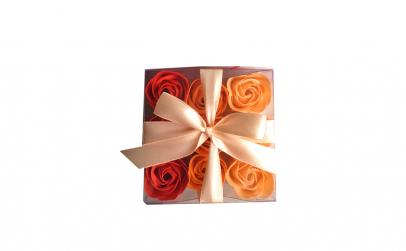 Set cadou cu 9 trandafiri (3 culori)