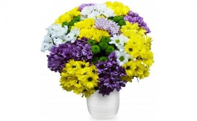 Buchet de 19 crizanteme multicolore