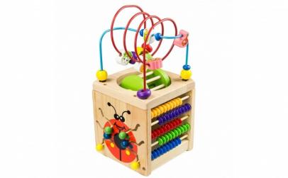 Cub activitati Montessori 6 in 1