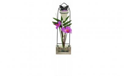 Orhidee decorativa