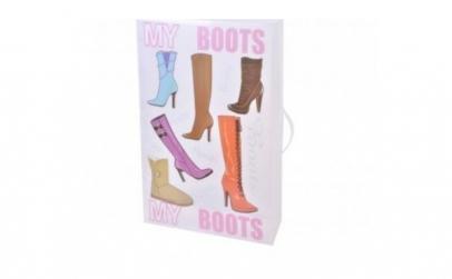 Set 2 cutii pentru depozitare cizme