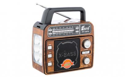 Radio Portabil cu Lanterna Fepe