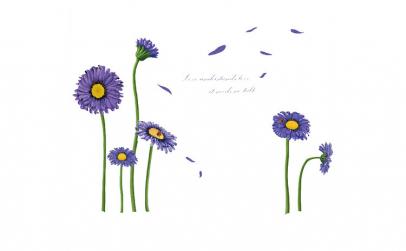 Sticker decorativ, Crizanteme albastre