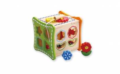 Cub activitati 5 in 1