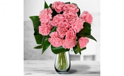 Buchet de 13 garoafe roz