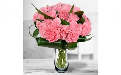 Buchet de 19 garoafe roz