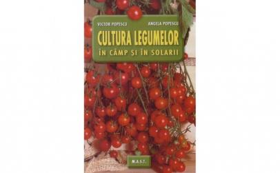 Cultura legumelor in camp si solarii -