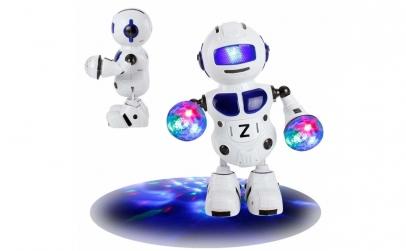 Robot multifunctional - Pionner 2
