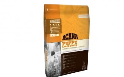 Hrana caini Acana junior talie mare-17kg