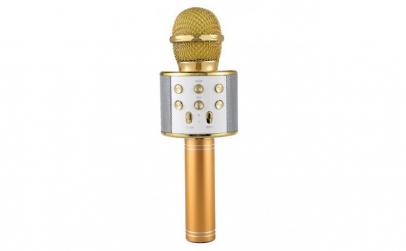 Microfon Profesional Karaoke Smart